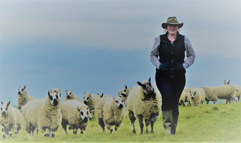 shepherding3